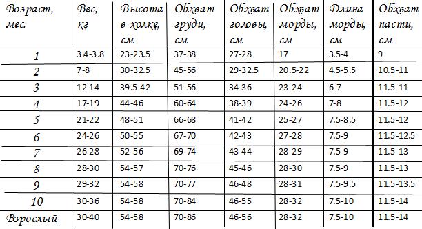 таблица веса щенков